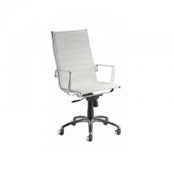 Cadeira de Escritório B023-20